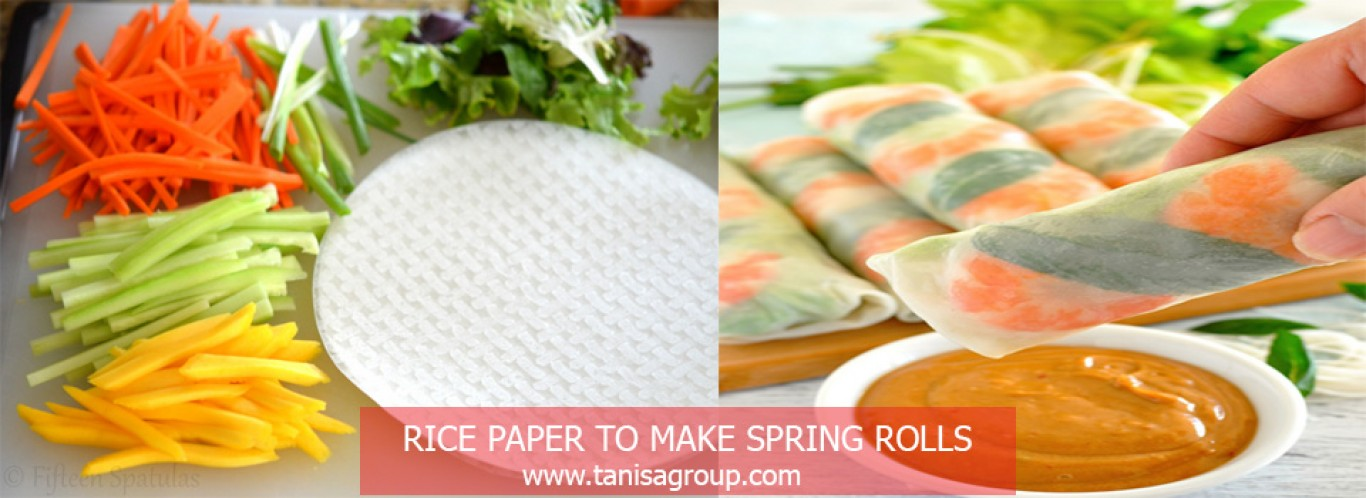 rice paper- spring rolls